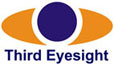 thirdeyesight retail consultants india